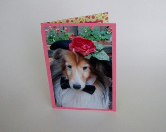 Shetland Sheepdog Card, Sheltie Greeting Card, Blank Dog Card