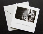 JUST THINKING!  ZEBRA Art Card, Greeting card, Nature photography, Black and White.