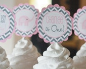 12 Pink Grey Chevron Elephant Birthday Cupcake or Cake Toppers - Ask About our Party Pack Sale - Free Ship Over 65.00