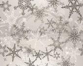 8ft x 16ft Vinyl Photography Backdrop Silver Snowflakes / Christmas / Holiday / Custom Photo Prop