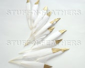 GOLD dipped natural white feathers - metallic gold hand painted duck feathers, loose white gold / 3-4.5 (7.5-11.5 cm) long,12 pcs /F120-3G