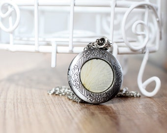 Real White Rose locket necklace - Real flower Necklace - Free Shipping