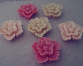 10pcs  Mixed color  Resin Flowers 21mm