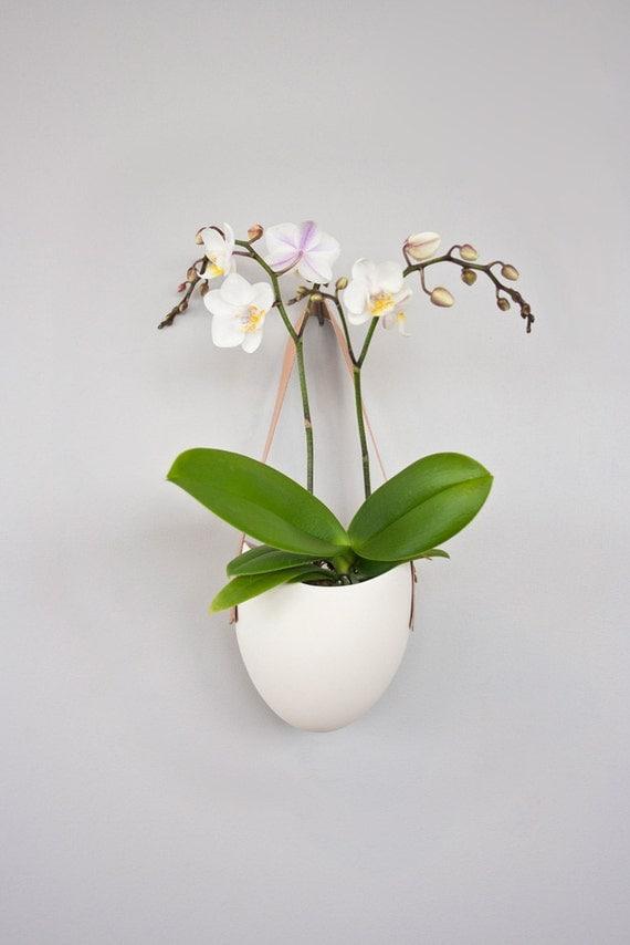 Spora w/ leather: porcelain hanging planter