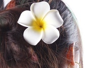 On Sale!!! Hawaiian Plumeria Frangipani Flower Hair Clip