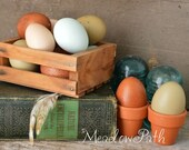 Easter Eggs, Blown Chicken Eggs, Blue Eggs, Brown Eggs, Olive Eggs, Green Eggs, Bantam Cream Eggs, Speckled Eggs, Hen, Poultry, 1 Dozen