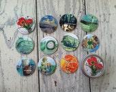 11 'pick me up' gentle reminder card set, affirmation set, reusable tin, life lessons in art.