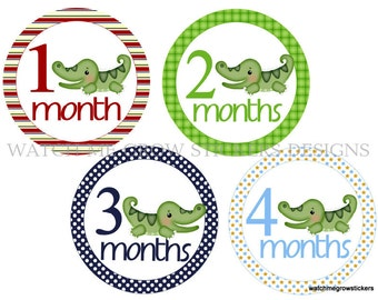 Monthly Baby Stickers Alligator Month Stickers Monthly Baby Stickers Baby Milestone Stickers Baby Shower Gift Boy Photo Prop
