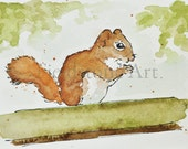 squirrel watercolor art aceo painting ooak miniature 2.5x3.5