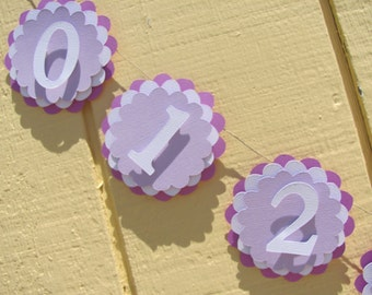 Lavender, Light Purple and White first year banner, 12 month banner, photo banner,