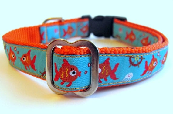 Items similar to gold fish dog collar 3 4 wide buckle or for Fish dog collar