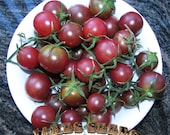 Negro Azteca Heirloom Cherry Tomato Seeds