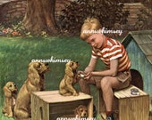 Vintage Print RESTORED  - Cocker Spaniels -  Boy With Dog Family - A Friend Indeed - Boy Fixes Pup's Paw - Mamma Dog and Babies #196