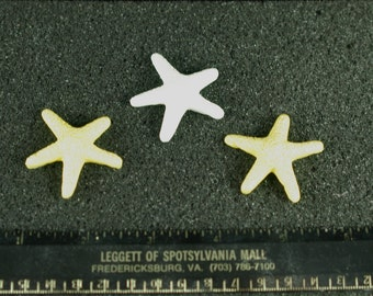 12 Fondant Starfish for decorating cakes, cookies or cupcakes