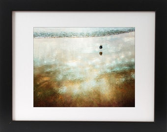 Ocean bird wall Art - Photography - Teal - Copper