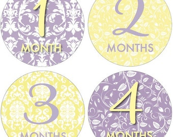 Monthly Onesie Stickers, Baby Shower or Baby Gift, BABY GIRL,  12 months, Purple/Yellow