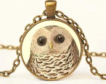Barred Owl, Vintage Art Pendant, Owl Pendant, Owl Necklace, Owl Jewelry, Vintage Owl