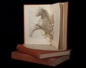 "Photographic Print of Book Sculpture 'Black Beauty' 10"" x 8"""