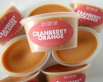 Cranberry Orange - Scented Soy Wax Melt - 2 Pack - Home Fragrance - Fall Scent - Scent Shot - Orange Citrus Scent