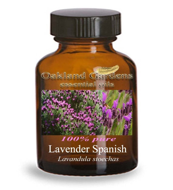 essential oil spanish lavender how to make