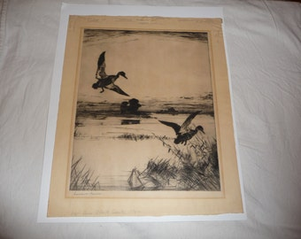 Frank W. Benson   Two Black Ducks   Original Etching