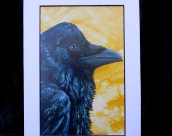 Raven with Yellow - A Raven in front of a yellow background.