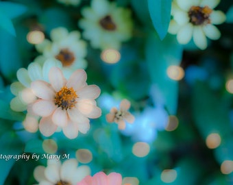 Flowers with Sparkle, Aqua, Sea Green, Floral, Nature Photography, Soft Focus, Home Decor