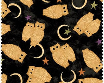 Owl Halloween Fabric - Black Cat Crossing by Maywood Studio MAS 9008 Z -  1/2 yard