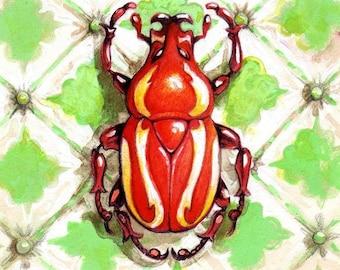 Red Fruit Chafer Beetle print by Angel Hawari, Nature Art, Insect Illustration, Entomology Illustration