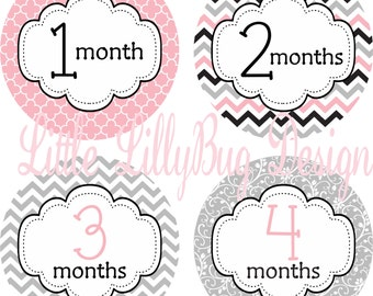 Monthly Baby Milestone Stickers Baby Girl Baby Shower Gift One-Piece Chevron Pink Grey Baby Stickers Monthly Baby Stickers Baby Month 358