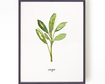Herb print Kitchen art Watercolor art Botanical print Kitchen print Wall art Culinary art Home Decor Spring decor Sage Buy 2 get 1 free