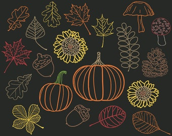 Fall Chalkboard Clip Art, Orange Leaves, Autumn Leaf Clipart, October, Chalk Pumpkin, Woodland Acorn, Mushroom, Forest Pine Cone, Sunflower