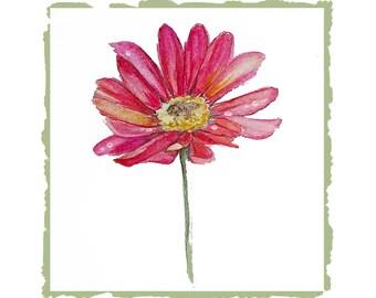 Pink Daisy Watercolor Greeting Card Set