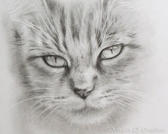 Original cat portrait drawing, original pencil drawing, could be framed or used as a greeting card. Great gift for cat lovers!