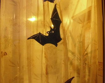 bat / flittermouse