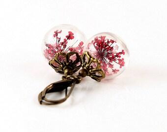 Genuine dill flowers earrings E058