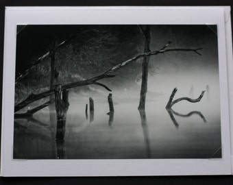 Fog on the water Black and white Greeting Card