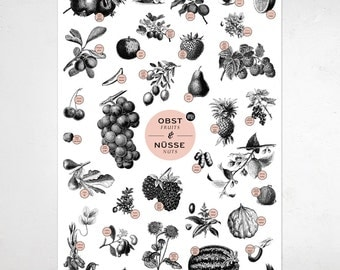 """A2 Poster """"Fruits&nuts"""""""