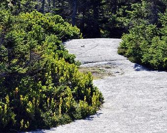 Pennant Point Nova Scotia