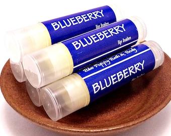 Blueberry Lip Balm, Natural Chapstick, Moisturizing with Aloe & Vitamin E, Teen Gift