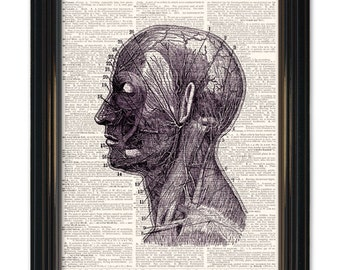 Dictionary art print Medical Anatomy. Head, Neck Diagram Dictionary page print. Buy any 3 get 1 FREE! Vintage dictionary paper 8x10.5 size