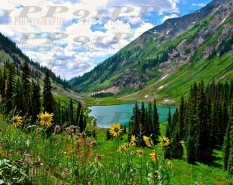 Emerald Lake, Crested Butte, Colorado - wildflowers -CANVAS, METALLIC, MATTE,  various sizes and finishes available