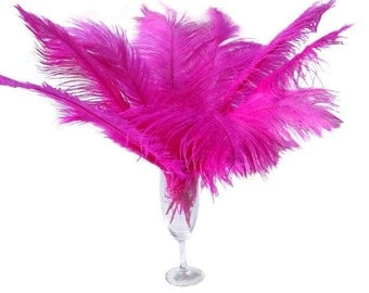 10 Pcs Hot Pink Ostrich Feather Plume 14-16""