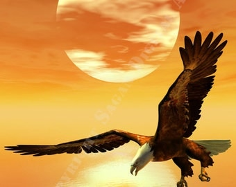 Fantasy Digital Art  Glossy Print 'Eagle Sunset'