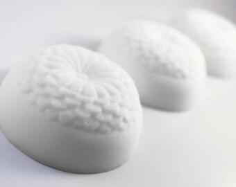 CONDITIONER - Creamy Coconut Milk Solid Conditioner: all natural hair care