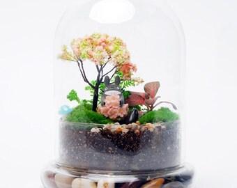 Glass air plant terrarium container wedding decoration