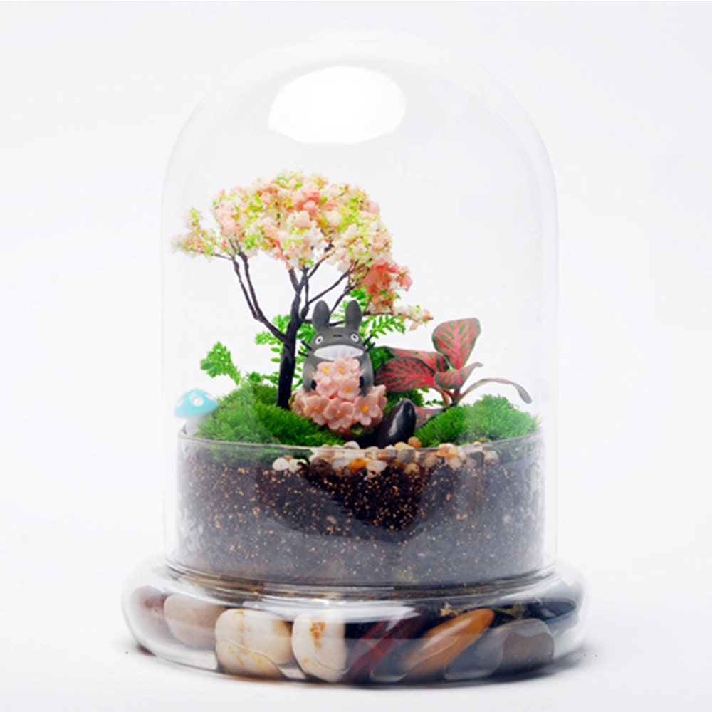glass air plant terrarium container wedding decoration. Black Bedroom Furniture Sets. Home Design Ideas