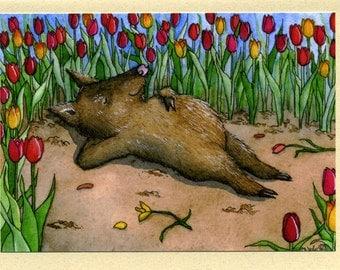 Sweet Dreams (javelina) Greeting Card