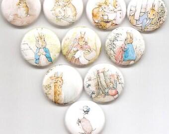 Peter Rabbit Beatrix Potter Classic 10 Pins Button Badge Pinback