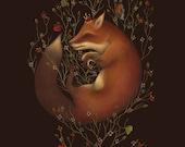 Fox Art Print - Morpheus - Limited Edition Print - Fox Poster - Natural history - Nature art